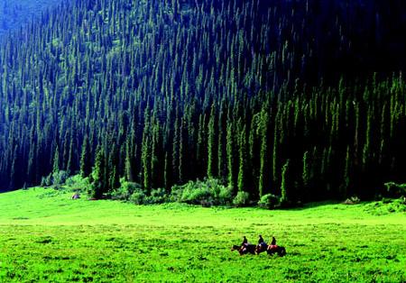 新疆伊犁河谷建设 国际旅游谷