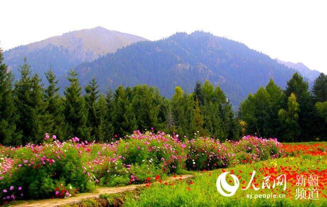 新疆乌苏佛山国家森林公园为国家4a级景区,是塔城地区,乌苏市重要
