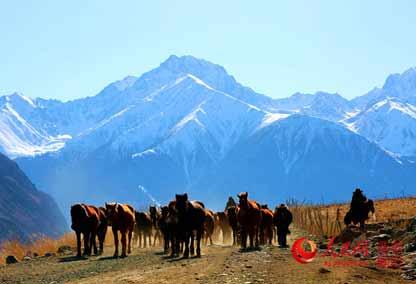 天山深处美丽的冬牧场(组图)