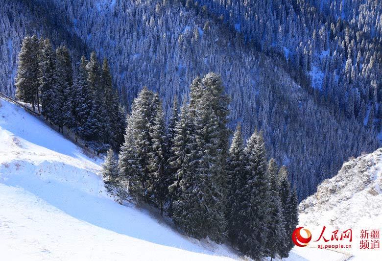 新疆江布拉克:白雪皑皑显美景(组图)
