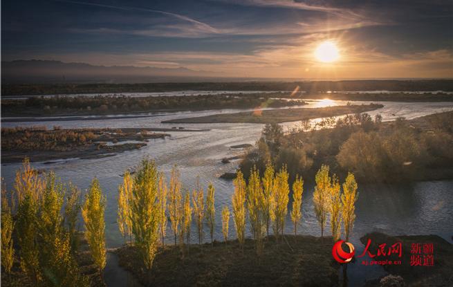 新疆伊犁河湿地秋色渐浓(图)