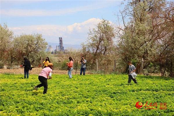 http://www.gyw007.com/caijingfenxi/555683.html